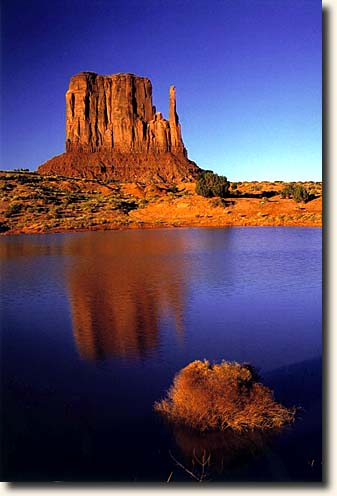 Monument Valley NTP: East Mitten Butte und Teich