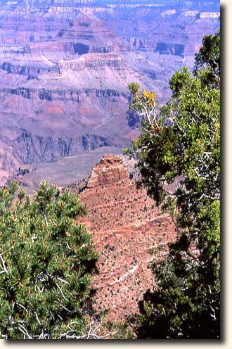 Grand Canyon NP: Blick vom Bright Angel Point