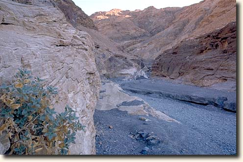 Death Valley NP: Mosaic Canyon